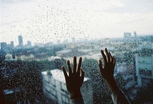 お部屋の湿度の調節。除湿機の効果ってどのくらい期待できるの?のサムネイル画像