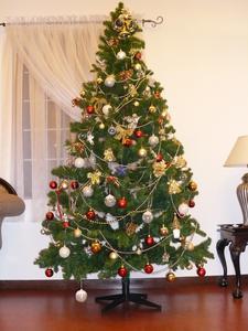 学んで活かす!クリスマスツリー、飾り、飾りつけの秘密大解剖のサムネイル画像