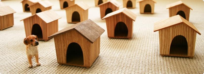 犬小屋は進化している!?インテリアに凝る方に!室内用犬小屋♡のサムネイル画像
