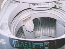 実は洗濯機の中にはカビがたくさん!洗濯機のカビを取り除く方法は?のサムネイル画像