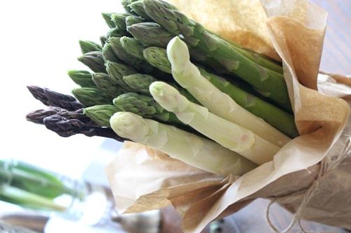 春の味覚を楽しめる!アスパラの育て方についてまとめました!のサムネイル画像