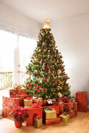 【保存版】クリスマスツリーはオーナメントにも意味があるんです♡のサムネイル画像