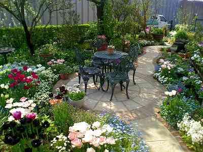 季節の花を知ってガーデニングをより楽しんじゃいましょう!!のサムネイル画像