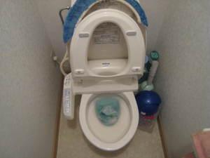 気になるトイレのつまりは速攻で解消しましょう。今すぐできる!のサムネイル画像