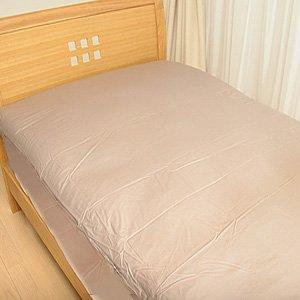 ベッドにダニがいるのは許せない!ベッドから追い出しましょう!のサムネイル画像