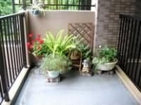 ベランダの掃除のポイントを紹介! きれいで快適なベランダに!のサムネイル画像