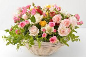 大切なあの人に贈りたい♡咲き誇るバラのアレンジメント特集のサムネイル画像