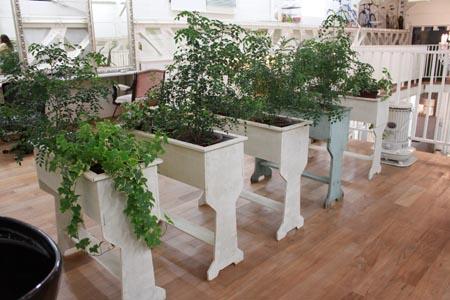 素敵な植木鉢やプランターをチョイスしてガーデニングを楽しもう♪のサムネイル画像