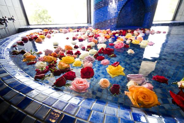 【お風呂の窓をちょっと変えるだけ】毎日の入浴でリラックス効果UP♪のサムネイル画像