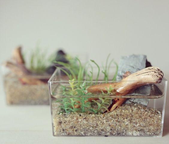 水槽には絶対流木を使いたい!【流木が沈まない時の対処法】のサムネイル画像