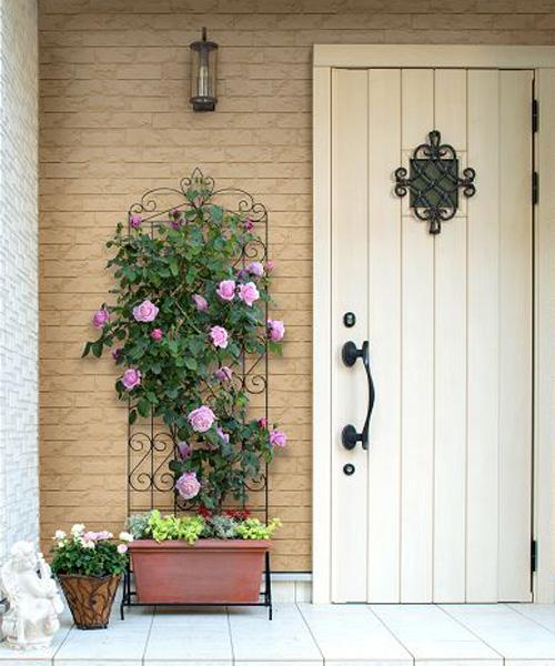 植物の美しさを引き立たせる【トレリスフェンス】を使ってみよう♪のサムネイル画像